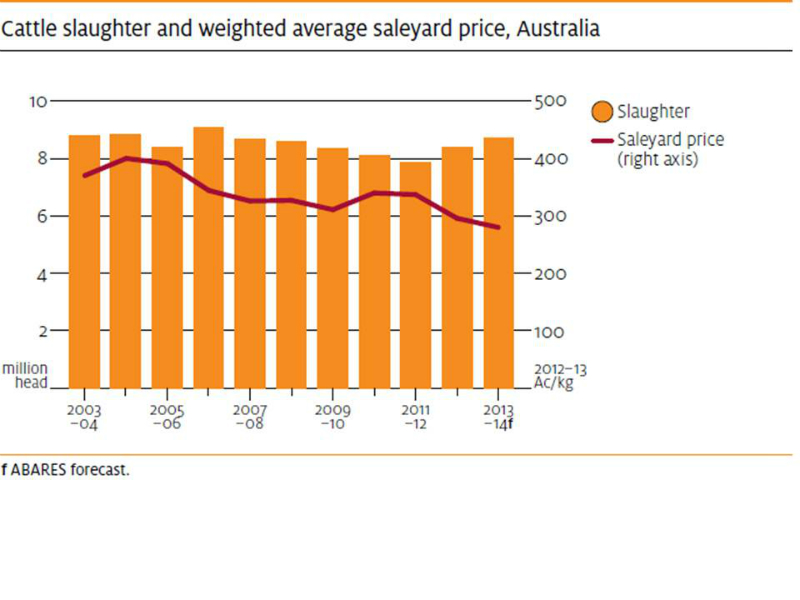 beef-cattle-slaughter-and-price-2003-to-2013