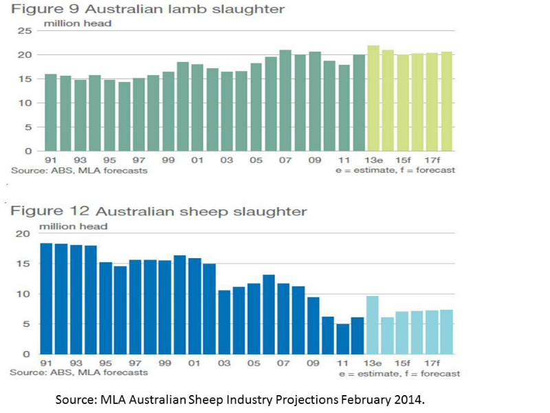 sheep-and-lamb-slaughter-1991-to-2013
