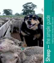 sheep-guide-114-cover