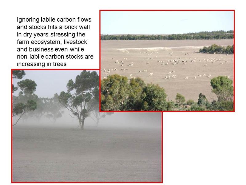 pasture-ecosystem-stress-when-labile-stocks-are-ignored
