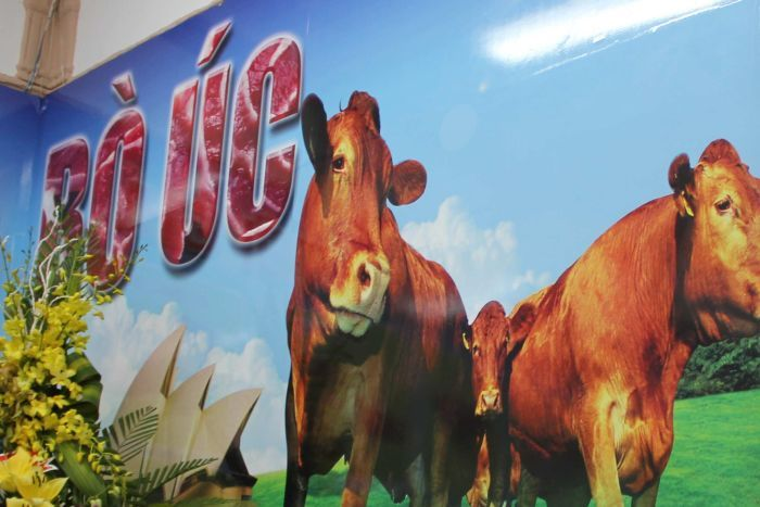 beef-vietnam-animex-advert-for-aussi-cattle-source-abc-rural-dec-14