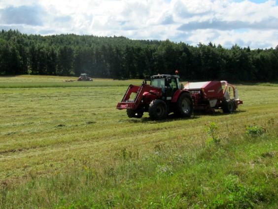 agroforestry-sweden