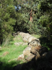 Rock wall conservation area