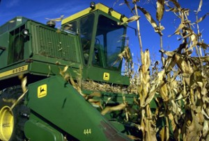 Drought in the US corn belt in 2012 prevented a record grain harvest. Photo: USDA.