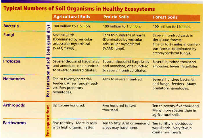 Part 2 Table 1 Typical numbers of organisms