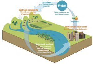Figure 1:  How a typical Investment in Watershed Services (IWS) project operates. Source: Forest Trends