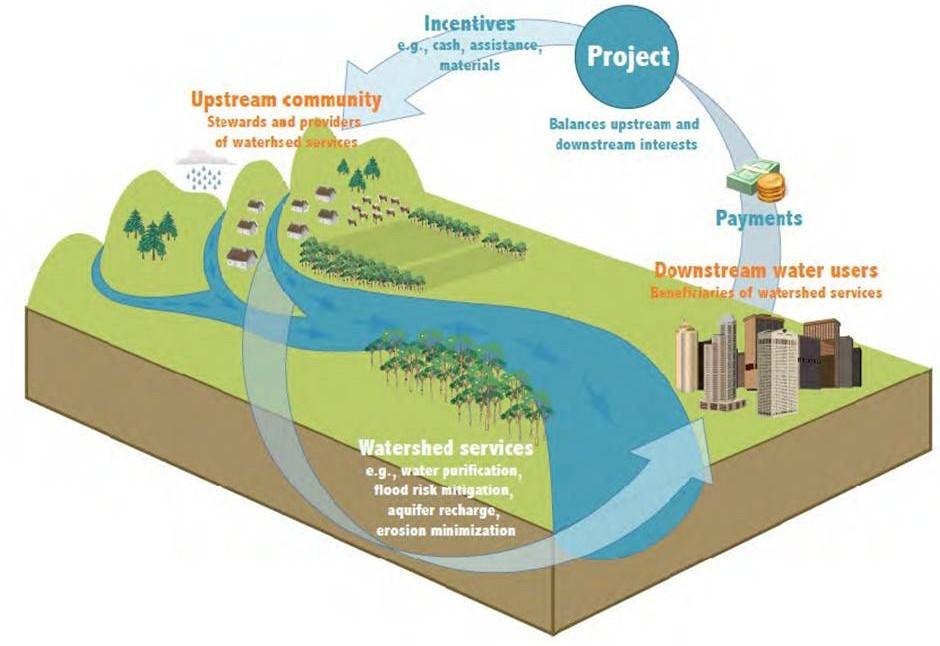 Simple Watershed Diagram