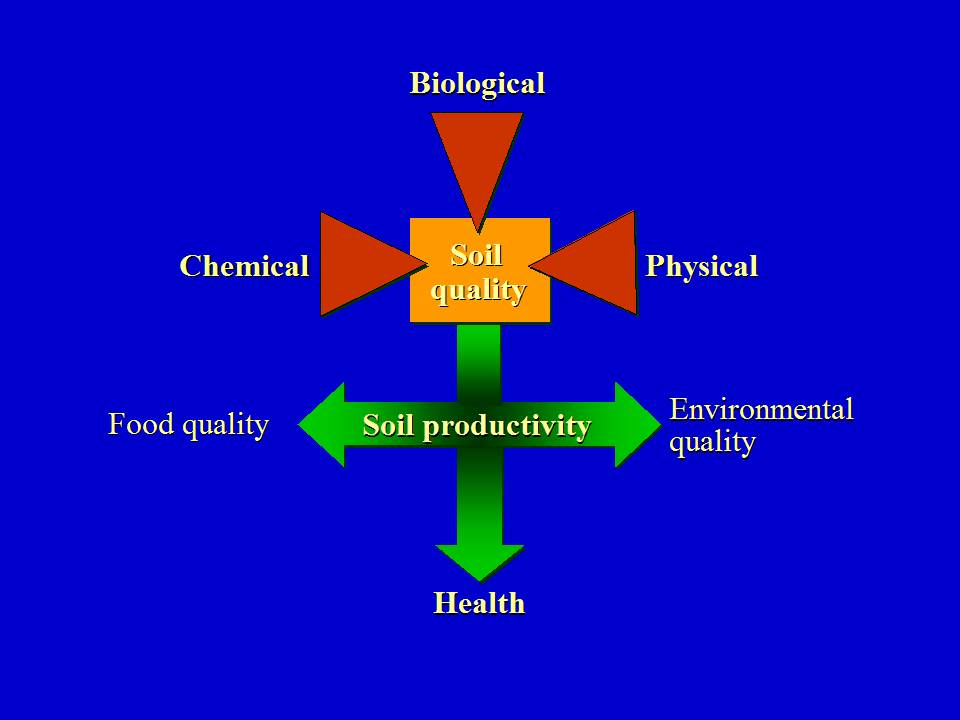 Maarten Stapper highlights the importance of understanding what impacts all components of soil ecology. Source: Jill Clapperton 2007.