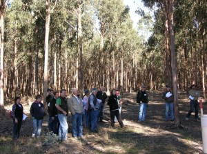 Farm forest blocks contribute to improving biodiversity and are major sequester of CO2 ensuring Moffitts Farm is a net carbon sink.