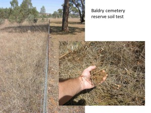 This unfarmed soil in a fenced off section of the Baldry, NSW cemetery reserve looked like it was a major carbon store, but the level was only moderate at 3.7%