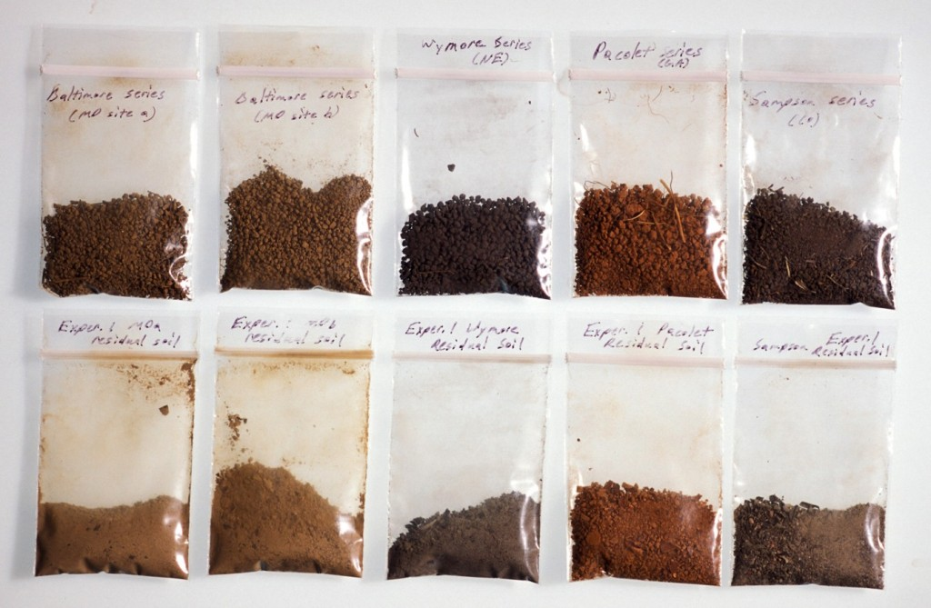 Dried samples of undisturbed soil (top row) and material left after extractable organic matter has been removed (bottom row). Although minerals are the most abundant components of soil, organic matter gives it life and health. Photo: Keith Weller.