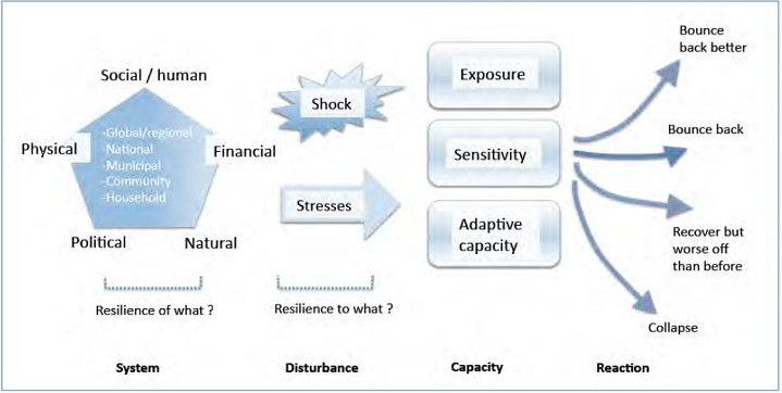 Figure 1: Resilience framework adapted. Source DFID 2011.