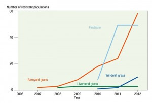 Figure 1: The increase in confirmed cases of glyphosate resistance in summer weeds across Australia, 2007−12. Source: Australian Glyphosate Sustainability Working Group