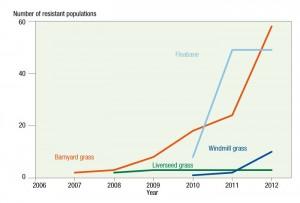 Figure 1: The increase in confirmed cases of glyphosate resistance in summer weeds across Australia, 2007−12. Source: Australian Glyphosate Sustainability Working Group
