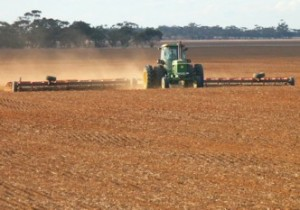 If the soil has a history of undergoing either periodic or ongoing combinations of tilling, leveling, fallow , applications of certain fungicides or planting of non-mycorrhizal crops (e.g. canola), then mycorrhizal populations are often lost or diminished to non-effective levels