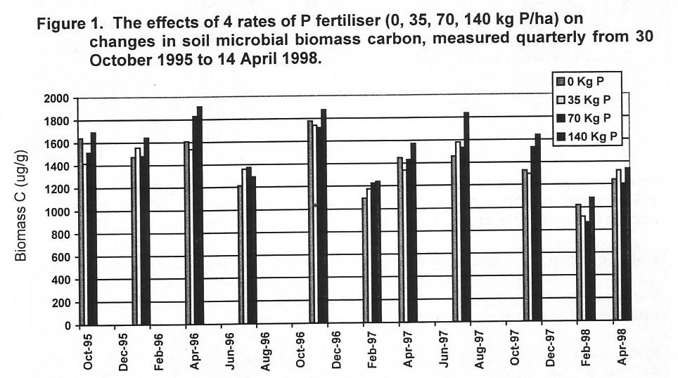 Microbial biomass v P fertiliser VDPI 1997