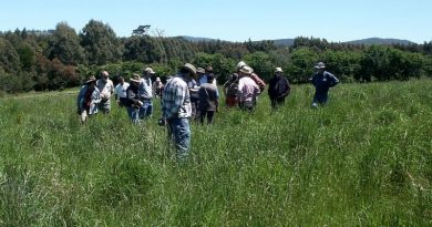 Visitors to Moffitts Farm inspect the pasture