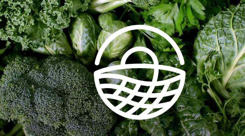 open food network logo