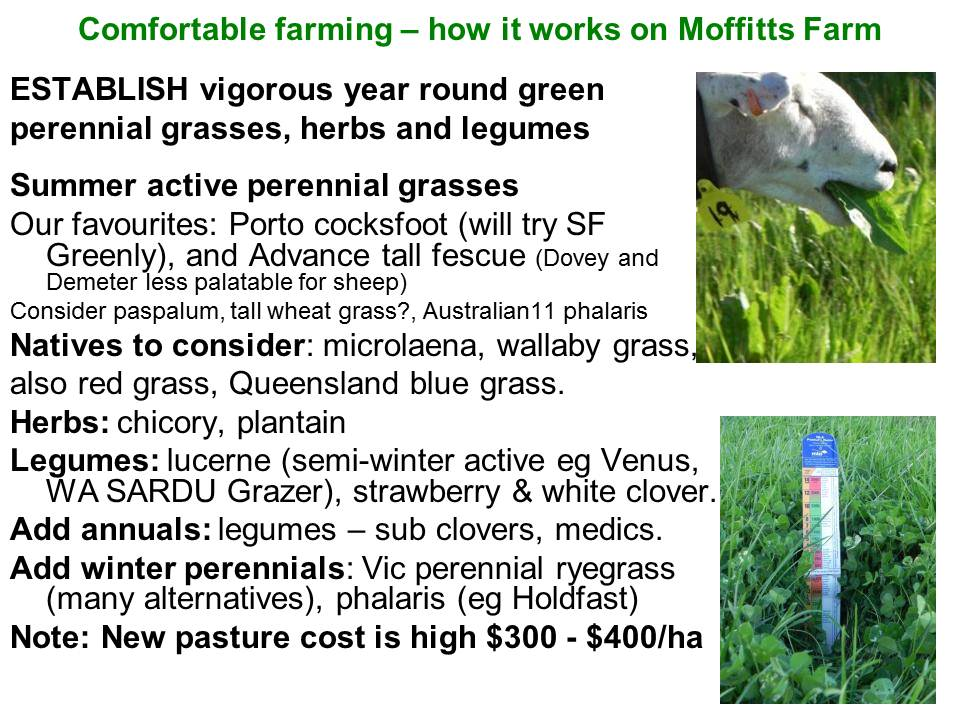 Comfortable Farming pasture species 1214