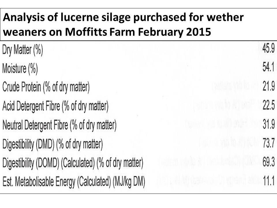 Lucerne silage analysis Feb 2015