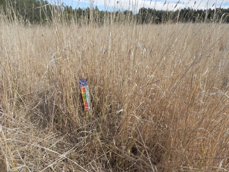 Pasture resilience 3 weeks grazing to 3 April 2015 Trial