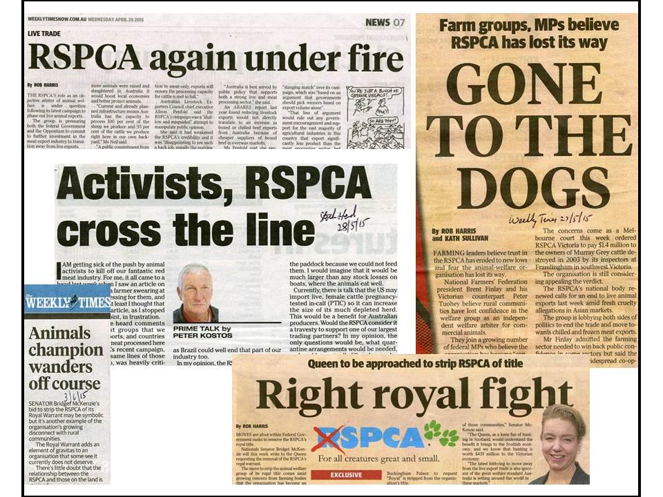 RSPCA newspaper headlines 615