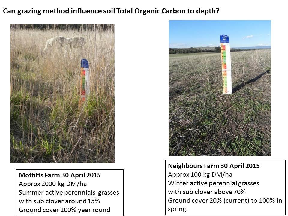 Soil TOC versus grazing method Pat Francis 2015