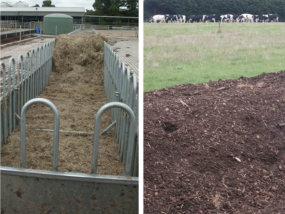 Pasture intensification dairy feed pad to compost to paddock 311