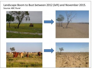 Landscape boom to bust 2012 to 2015