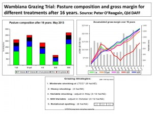 Wambiana grazing trial results after 16 years