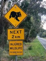 Victoria's rural road speed guidelines ignore wildlife existence