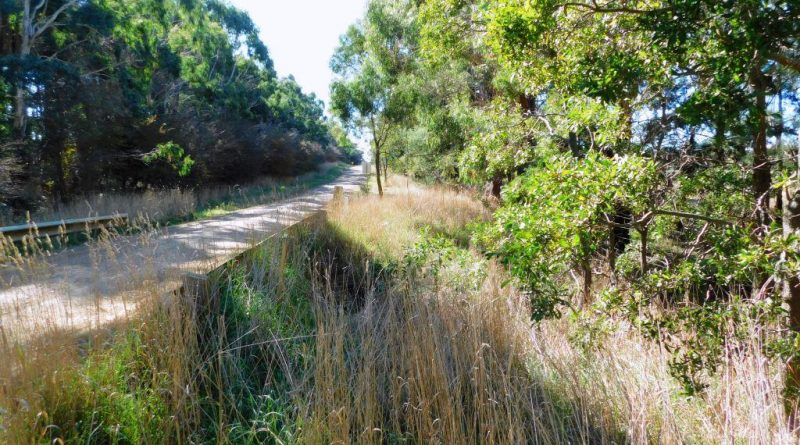 Macedon Ranges Shire Council Draft Roadside Conservation Management Plan has missed environmental health opportunities